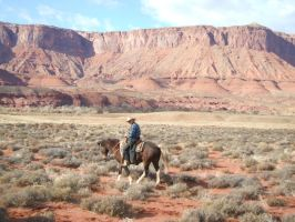 Cowboy 16 .:Stock:. by WesternStock