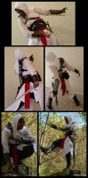 Altair Cosplay- current state by fevereon
