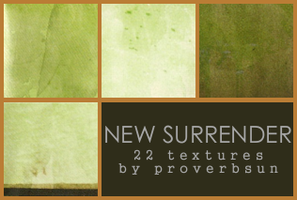 Texture Set 053 by ProverbialSunrise