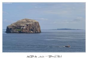 Alba 10 - Bass Rock 1 by 51ststate