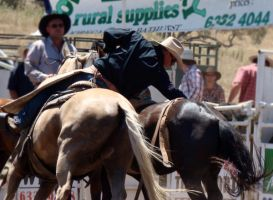 Rockley Rodeo 1 by engaged-vacancy