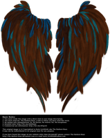 Heart Shaped Wings - Brown by Thy-Darkest-Hour
