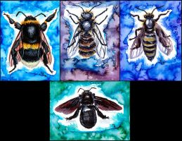 Bees by Verdego