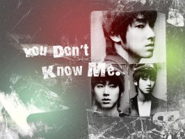 Wallpaper - You Don't Know Me by c3minut3s