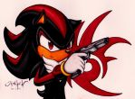 Shadow: Getting Serious by RAWN89