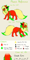 Flare's Reference sheet by FlareAKACuteFlareon