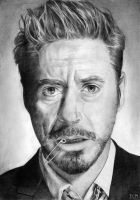 Robert Downey Jr. by MrsButterD