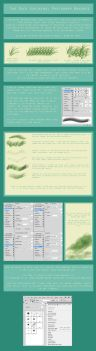Photoshop Brushes Tutorial by Duces-Wild