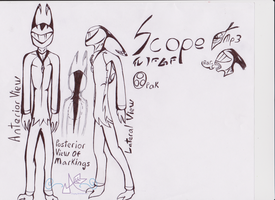Scope ref 2013 uncolored by Incyray