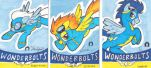 One of a kind cards--Wonderbolts by MMMenagerie
