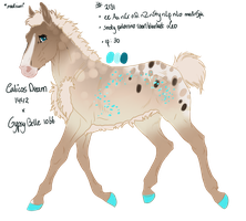 Padro Foal Design - NGS Geir 2131 by ArtOfFreedom