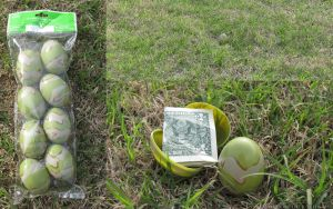 Camouflage Eggs Review by madcomputerscientist