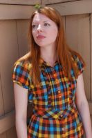 Plaid Dress Stock 8 by chamberstock