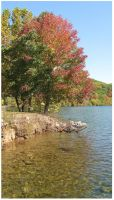 Fall Trees and Lake -Chilhowee by Crystal-Marine