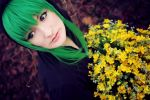 Vocaloid - Golden Flowers by aco-rea