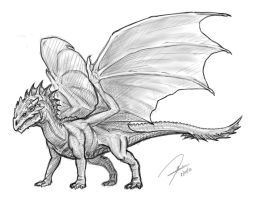 Brown Dragon (Drgn2-8-8-13) by me22b