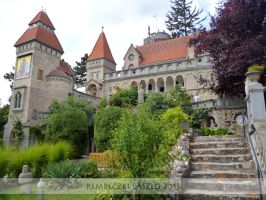 Bory Castle 06 by rembo78