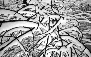 Snow abstract by N-o-B