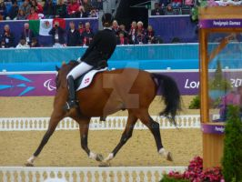 Paralympic Dressage - Denmark by Belle-Vaux