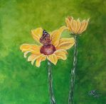 The Sunflower and the Butterfly by caitiedidd