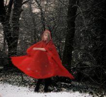 Red Riding Hood by gokate1