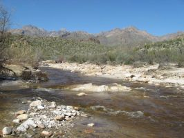 Sabino Canyon 6 by thepissant