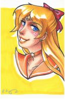 sailor venus by kakumei