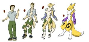Renamon Change by schmen