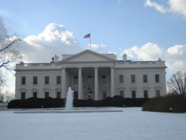 White House by Darthpickle
