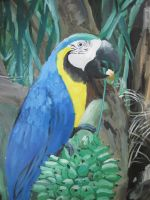 Blue and gold macaw by CGskillz