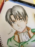 Levi Heichou by AnImAtEd-MeDoW