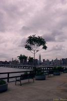 Williamsburg side by LouiseCypher