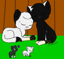Batsong and Skypool waching their kits in Starclan by biggywoot