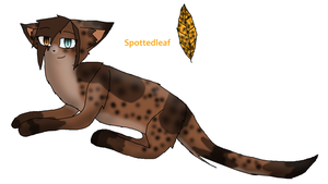 Spottedleaf (100 Warriors Challenge) by TheSlendermanIsHere