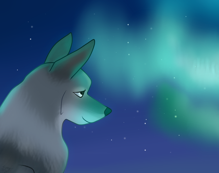 Watching the aurora by Funny-arts