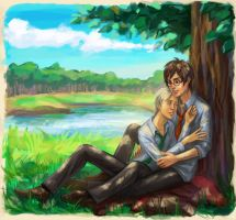 Harry Potter ~ summer day by zarin-a