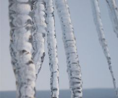 Icicles I by cayra