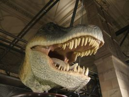 dinosaur head by autumn-icestock