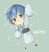 CO: Kaito~ by pinkbunnii