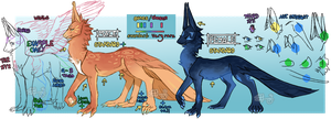 Anatomy Chart and Traits by Arcadine