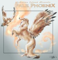 Pale Phoenix by soulofwinter