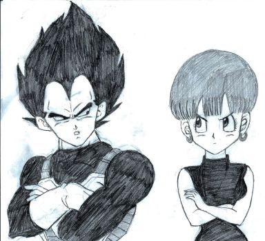 Bulma and Vegeta by BadWolf212