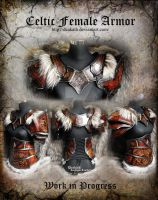 Celtic Female Armor set - WIP 2 by Deakath