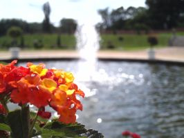 Fountain and Flowers at Hampton Court Palace by Squidgybuffalo