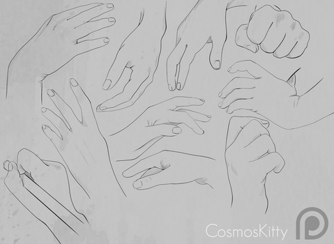 Hand Studies by CosmosKitty