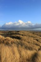 Formby - Dunes 8 by Tasastock