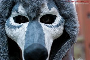 ALCON The Great Grey Wolf Sif 3 by TPJerematic