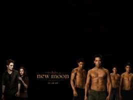 Another New Moon Poster by Starchild9390