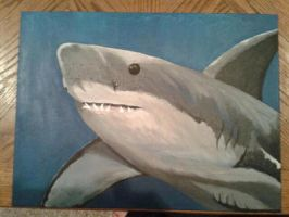 Great white  by brokencyde234