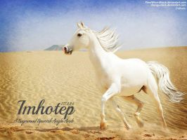 Imhotep by JuneButterfly-stock